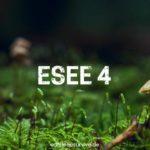 ESEE 4: Erfahrungen & Fakten zu dem beliebten Outdoormesser
