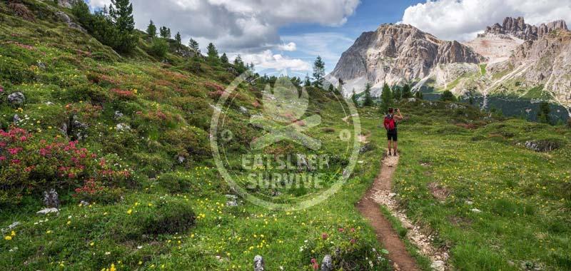 Wanderschuh Kategorien und Arten